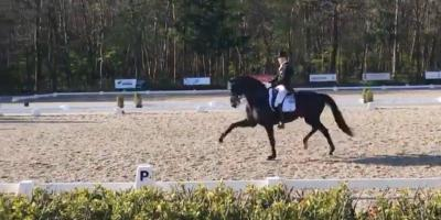 Glock's Zonik og Edward Gal sin Grand Prix debut